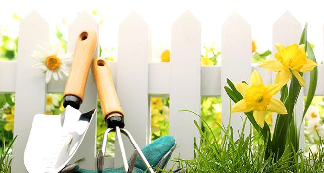 ferreteria-alicante-grupo-baldo-jardineria